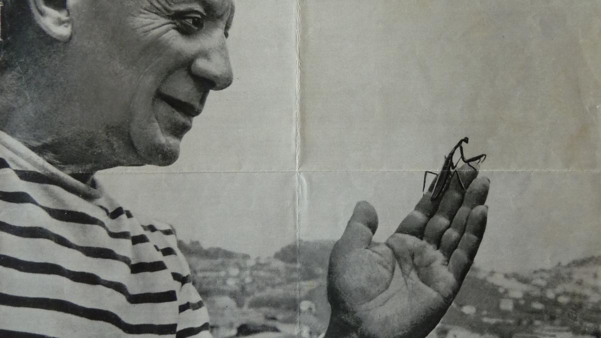 París prepara un verano de Picasso
