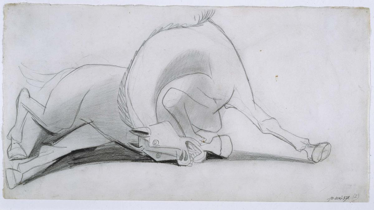 Estudio para el caballo (I). Dibujo preparatorio para Guernica